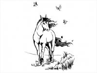 Wandtattoo Elegantes Pferd mit Vögeln Motivansicht