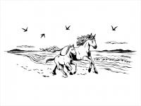 Wandtattoo Wilde Pferde am Meer Motivansicht