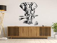 Wandtattoo Elefant | Bild 2
