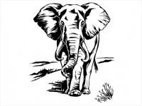 Wandtattoo Imposanter Elefant Motivansicht
