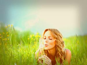 Tipps Zufriedenheit Pusteblume
