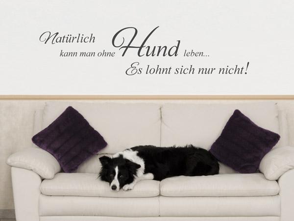 dekoration f r hundefans wandtattoos rund um den hund. Black Bedroom Furniture Sets. Home Design Ideas